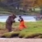 John West Salmon Bear Fight